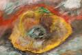 06.Fruit coupe (D : 30cm x 42cm    Prix=100 €)