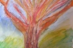 3.L'arbre musclé
